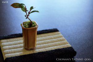 二越ちりめんの麻の葉文様と熊本県産い草を使ったミニ畳