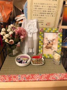 愛犬ペットの仏壇 安置 骨壺置き場としての仏畳